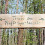 """Das """"Pfefferminzbähnel"""" - Die Gäubahn - Die Lokalbahn 282a Neustadt - Geinsheim - Speyer"""